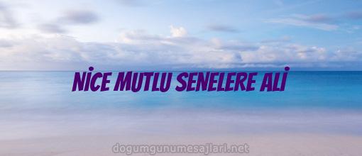 NİCE MUTLU SENELERE ALİ