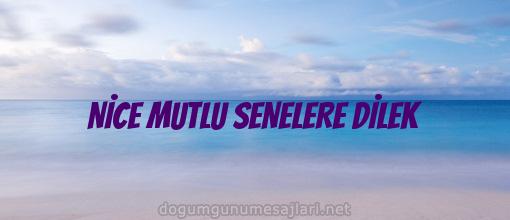 NİCE MUTLU SENELERE DİLEK