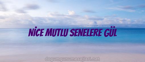 NİCE MUTLU SENELERE GÜL