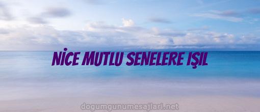 NİCE MUTLU SENELERE IŞIL