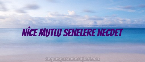 NİCE MUTLU SENELERE NECDET